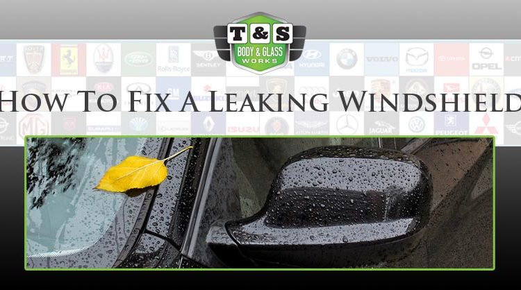 How To Fix A Leaking Windshield